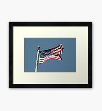 USA Flag Framed Print
