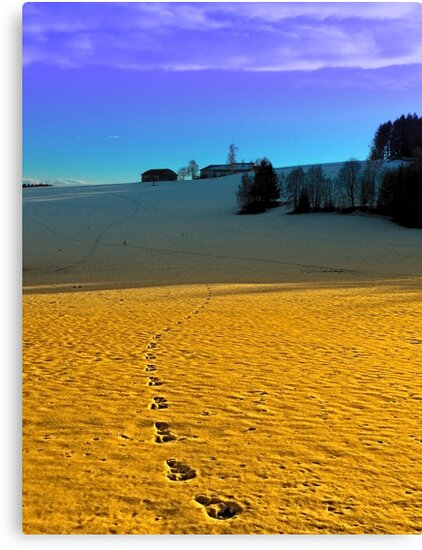 Colorful winter wonderland scenery | landscape photography by Patrick Jobst