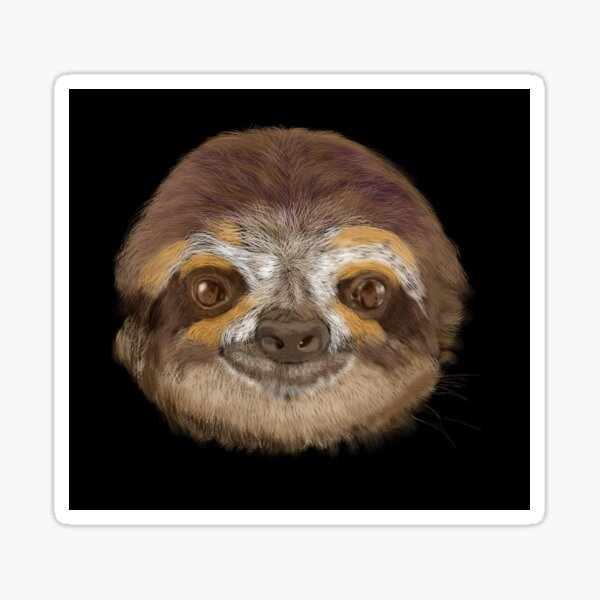 Living the Life, Smiling and Quiet Sloth Sticker