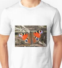 European Peacock T-Shirt