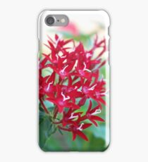 Red Star Flowers iPhone Case/Skin