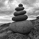 Balancing Act by Doug Cook