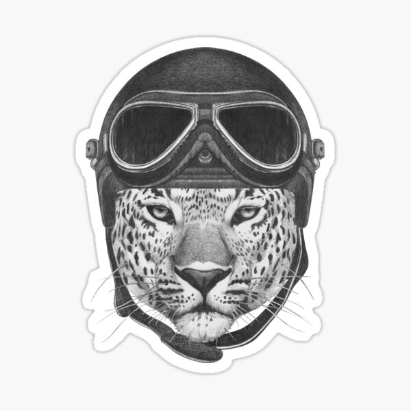 Portrait of Leopard in Vintage Helmet. Sticker
