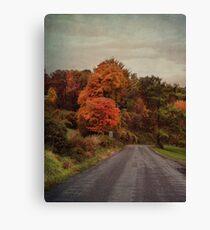 A colorful ride Canvas Print
