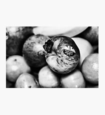 An apple a day keeps the doctor at bay Photographic Print