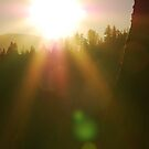 Rising Sun with Lens Flare by Jared Manninen