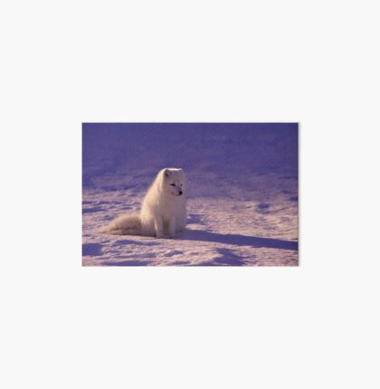 Arctic Fox Art Board