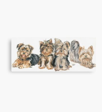 Yorkshire Terrier Puppies Canvas Print