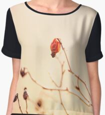 Dried rose fruits on twigs. Nature texture. Soft pastel colors: beige and pink Women's Chiffon Top