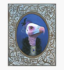 Helen The Vulture Photographic Print