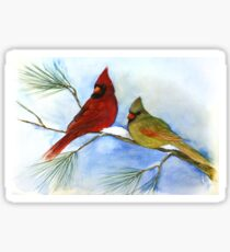 cardinals on a pine branch wintry handmade aquarelle Sticker