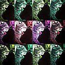 Cat cat cat cat by gluca