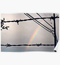 Barbedwire Rainbow Poster