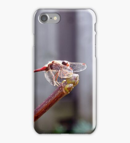 Relaxing in Contemplation in the Temporary Season iPhone Case/Skin
