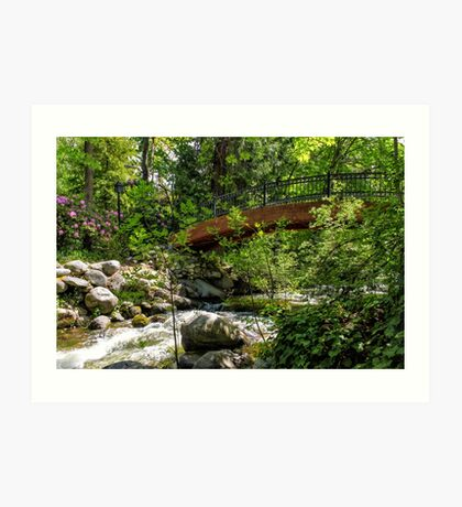 Ashland Creek Art Print