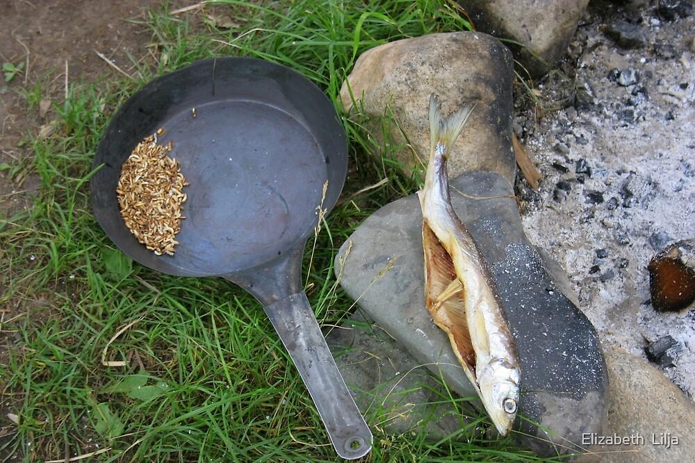 Fish Drying by Elizabeth  Lilja