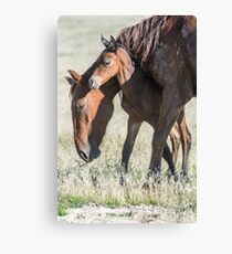 The Safest Place on Earth Canvas Print