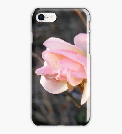 Illuminance iPhone Case/Skin