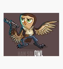 Han Sol-OWL Photographic Print