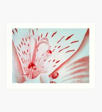Drawing Day Red Bubble Nectar Art Print