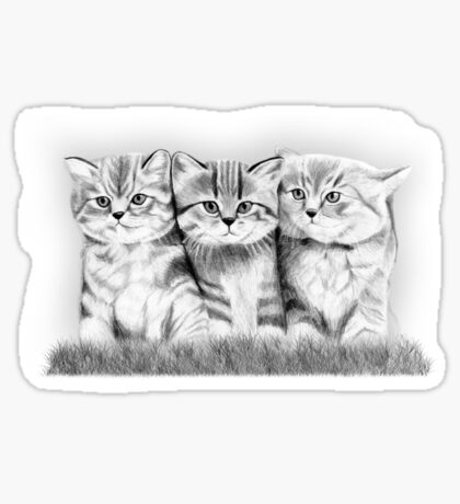 Pussy Cats Sticker