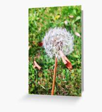 Dandelion World Greeting Card