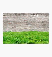 Old stone wall and green grass. Peaceful texture Photographic Print