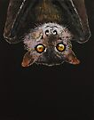 Bat by Michael Creese