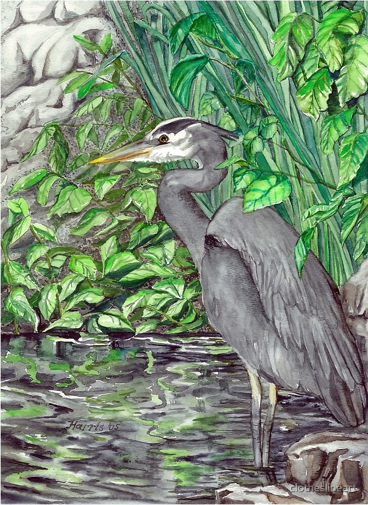Blue Heron by clotheslineart