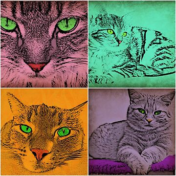 Tabby Cat Pop Art Collage by smm2276