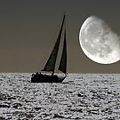 By the light of the Silvery Moon by Clive