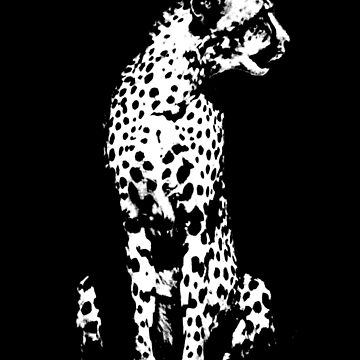 Cheetah Vintage Style Black and White  by joannejgg