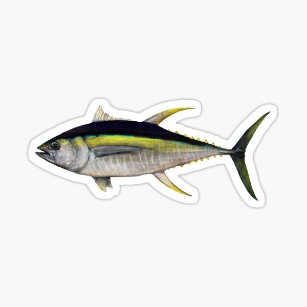 Yellowfin Tuna  (Thunnus albacare) Sticker