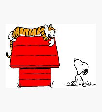 Geek Calvin And Hobbes Tiger Sleep On Doghouse Photographic Print
