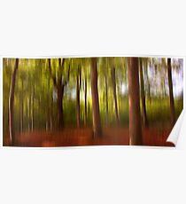 Autumn. Trees Poster