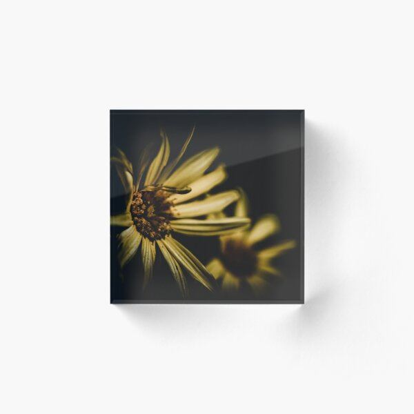Flower in the dark Acrylic Block