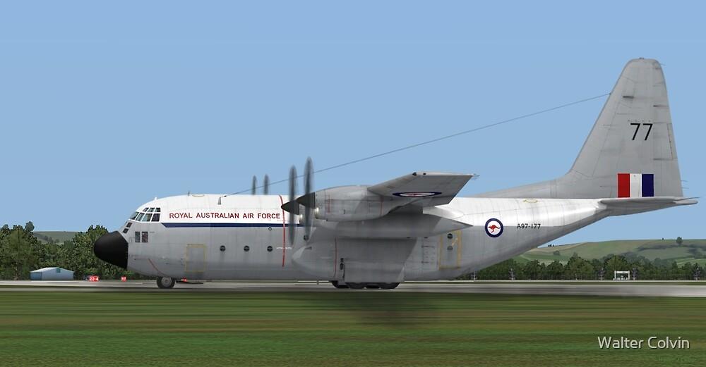 Royal Australian Air Force C-130 Hercules by Walter Colvin