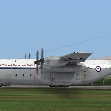 Royal Australian Air Force C-130 Hercules by Skyviper