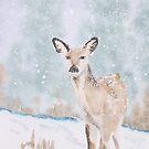 Winter visitor by Pat  Elliott