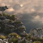 Gray Wolfs by Walter Colvin
