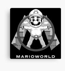 Mario World Canvas Print