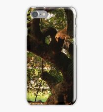ultima luz sobre naturaleza iPhone Case/Skin
