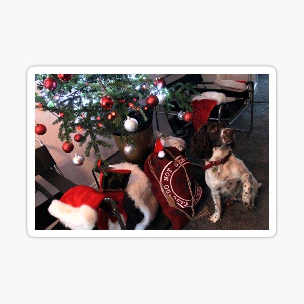 Christmas - Brock`s Stocking ! Sticker