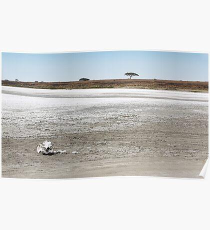 Death, & Dead Lake, Tanzania  Poster