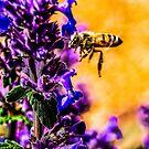 Bee Art Redmond by Richard Bozarth
