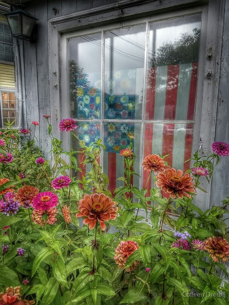 American Zinnias by Colleen Drew