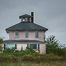 Plum Island Pink by Colleen Drew