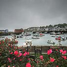 Rockport and Roses by Colleen Drew