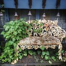 Rockport Bench by Colleen Drew