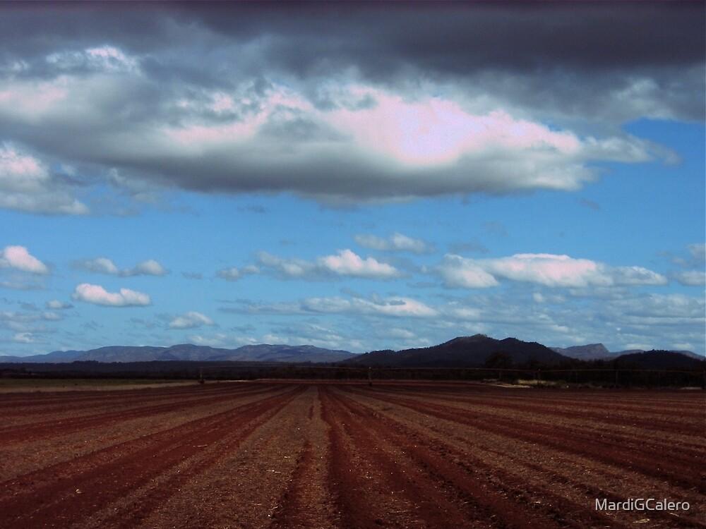 Between Mareeba and Billwella, far north QLD. Aust[ by MardiGCalero